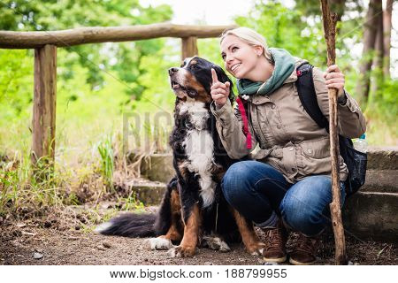 Hiking woman with rucksack and her bernese mountain dog on a trail stock photo