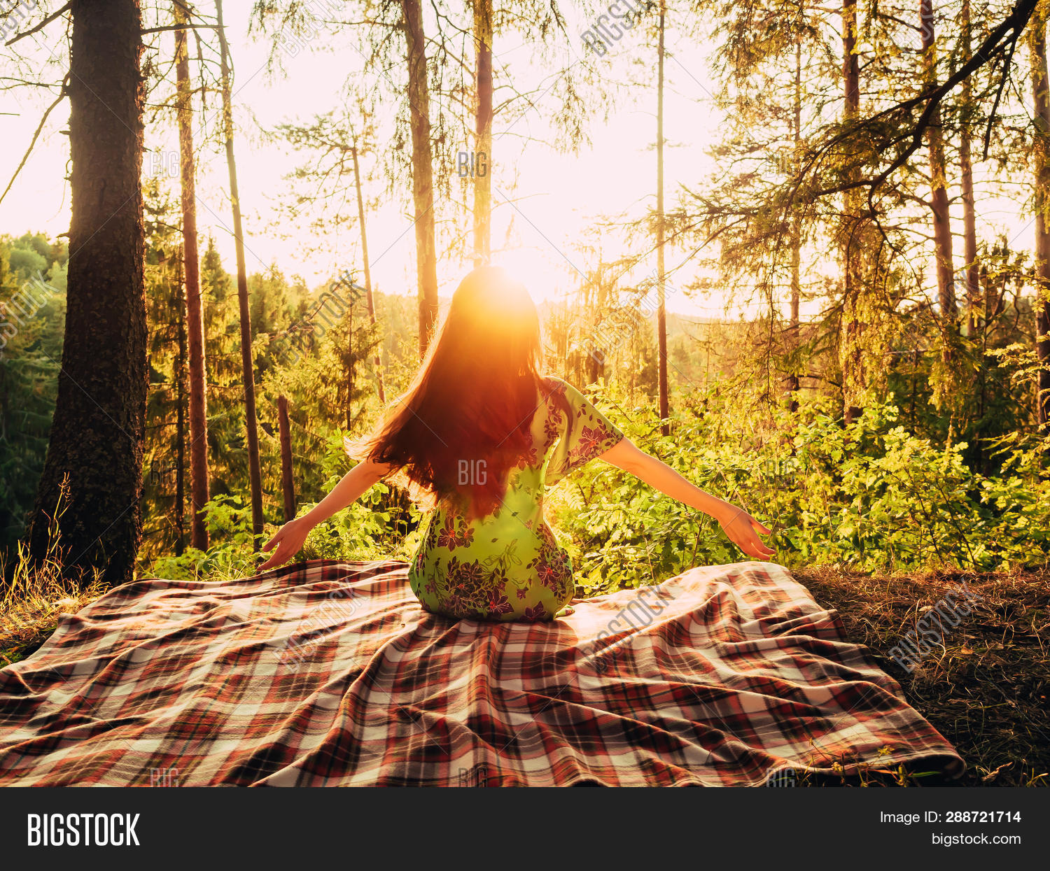 arm,back,beautiful,beauty,bright,caucasian,dawn,energy,enjoy,enjoyment,female,forest,free,freedom,girl,hand,happiness,happy,inspiration,joy,joyful,leisure,lifestyle,light,morning,natural,nature,one,open,outdoor,outstretched,people,person,relaxation,rest,silhouette,spring,summer,summertime,sun,sunlight,sunny,sunrise,sunset,sunshine,tree,vacation,view,woman,young