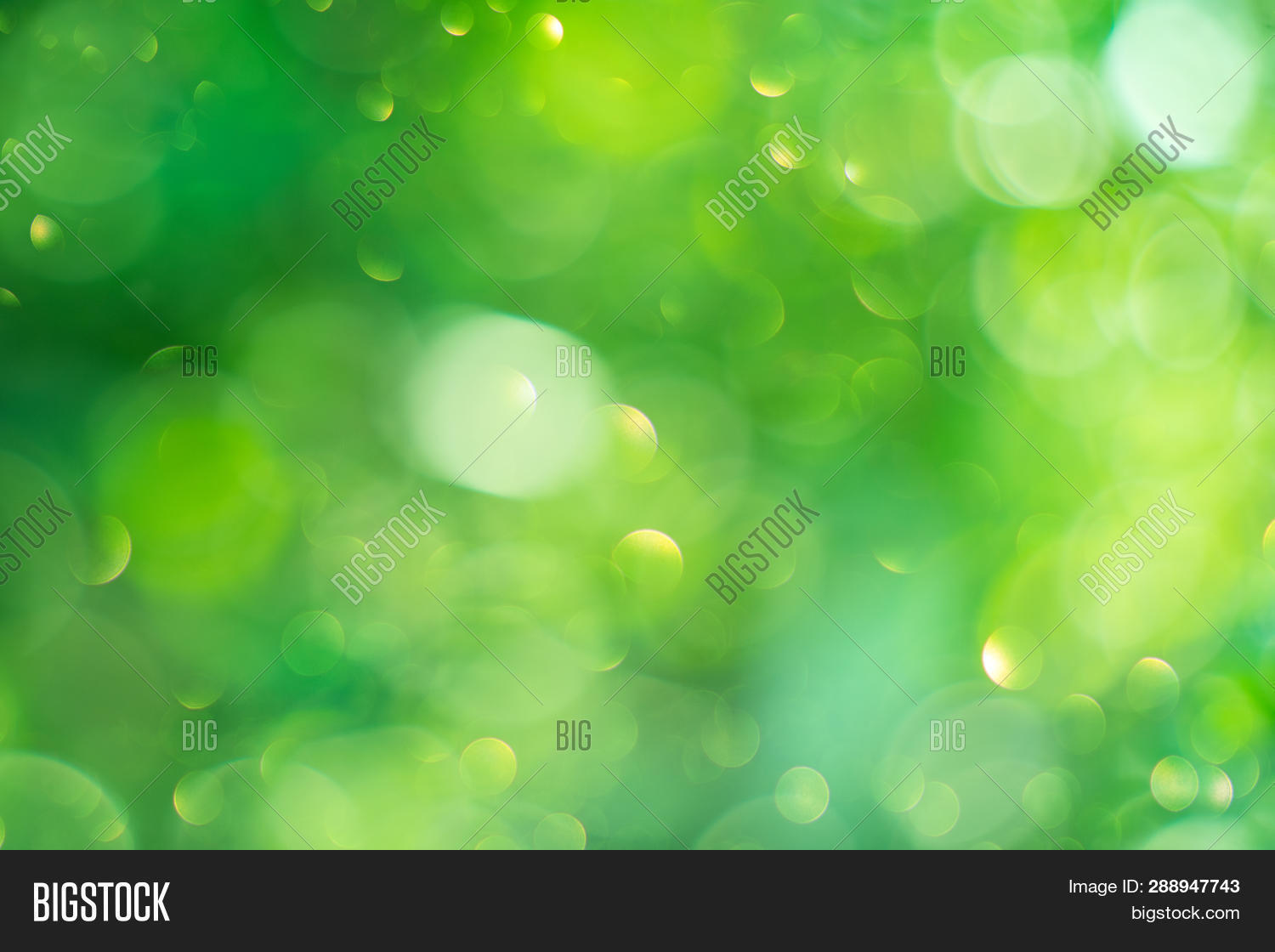 Beautiful Nature abstract Blurred Background. Beauty Green Bokeh backdrop. Summer or spring backdrop