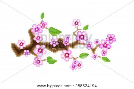 Branch Sakura, Vector Illustration Cherry Blossom, With Flowers In Anime Style. Unorthodox East Asia