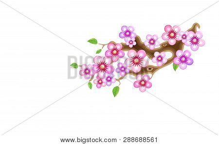 Attribute Of Hanami, Branch Sakura, Vector Illustration. Cherry Blossom, With Flowers In Anime Style
