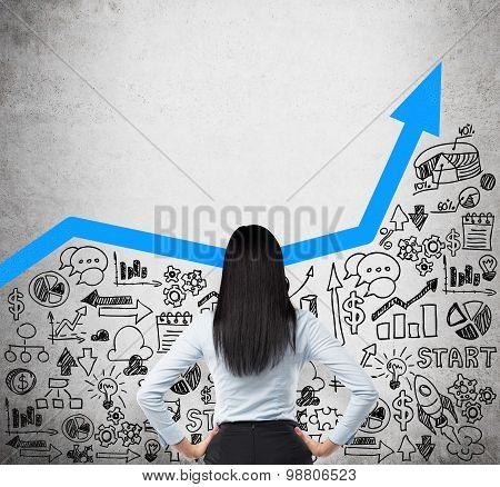 Rear View Of The Business Lady Who Is Looking For The New Business Ideas. Blue Growing Arrow As A Co