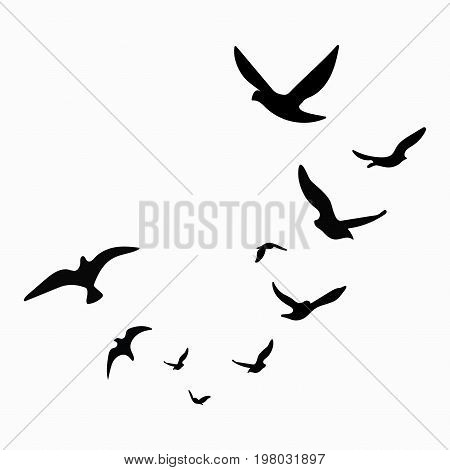 Silhouette of a flock of birds. Black contours of flying birds. Flying pigeons. Tattoo. stock photo
