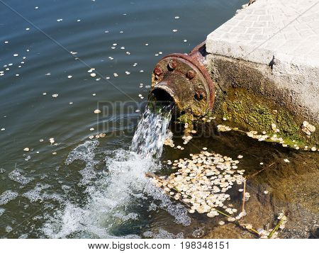 Sewage Drains Into The River, The Sea, The Lake. Environmental Pollution. Wastewater, Ecological Cat