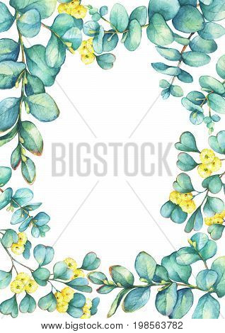 Green floral template with a branch of silver-dollar eucalyptus cordata and Eucalyptus websteriana (Heart-leafed), isolated on white background. Watercolor hand drawn painting illustration. stock photo