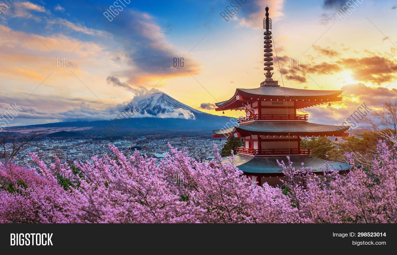 arakura,asia,asian,beautiful,bloom,blossom,blue,cherry,chureito,day,foliage,fuji,fuji-san,fujisan,fujiyoshida,garden,japan,japanese,kawaguchi,kawaguchiko,landmark,landscape,mount,mountain,nature,pagoda,park,pink,red,sakura,scenery,season,sengen,shinto,shrine,sky,spring,sunset,temple,tokyo,travel,tree,view,volcano,yamanashi