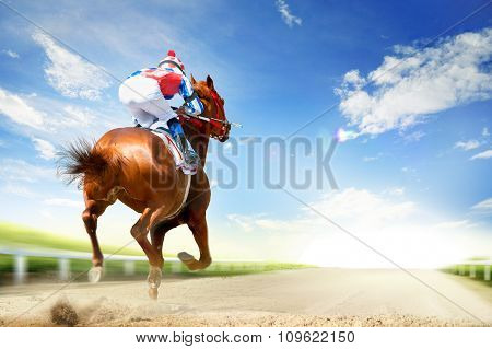 Racing Horse Coming First To Finish Line