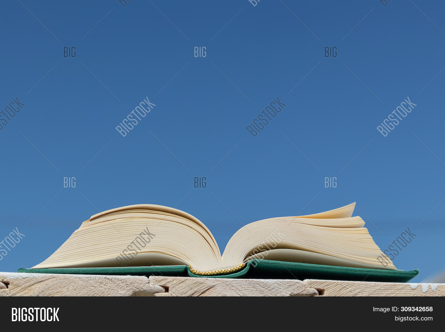 background,blackboard,blank,blue,book,business,clouds,concept,cover,design,document,education,environment,flying,grass,green,idea,information,isolated,knowledge,learn,library,light,literature,magic,motivate,nature,object,old,open,page,paper,read,school,sky,spring,stack,story,study,summer,sun,sunlight,text,textbook,white,wisdom