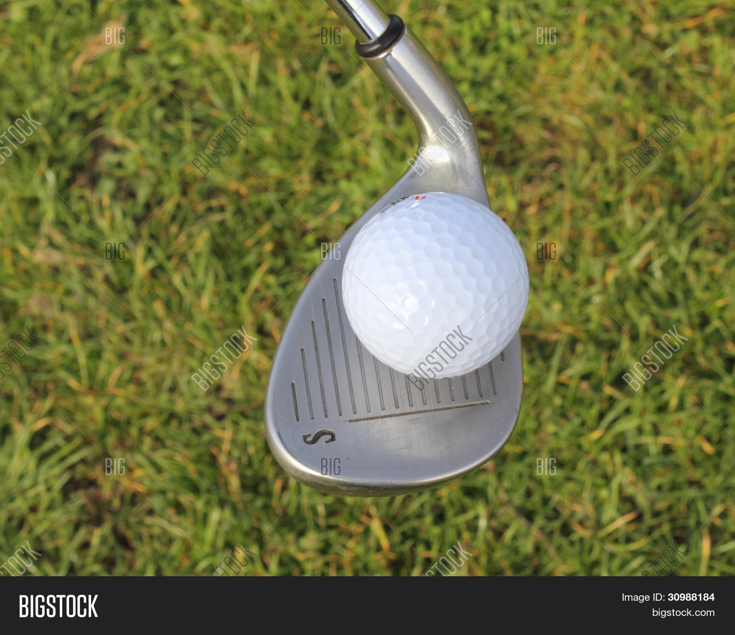 achieve,achievement,action,active,activity,aim,aiming,background,balance,ball,beautiful,begin,bet,birdie,bright,buggy,cart,challenge,close,club,compete,competition,competitive,concept,conceptual,country,course,cup,cut,day,design,detail,dimples,divot,drive,driven,driver,eagle,exercise,expense,expensive,fairway,fast,field,fit,fitness,flag,follw,fore,form,four,fourball,friendly,frustrate,frustrating,frustration,fun,gamble,game,golf,golfball,golfcourse,golfer,golfing,grass,green,greenery,grooves,group,handicap,hard,hit,hobby,hole,holiday,horizon,inches,invitation,invitational,iron,lawn,layout,leisure,life,lifestyle,links,long,natural,nature,outdoors,par,peg,pitch,pitching,play,player,playing,practice,putt,putter,ready,recreation,relax,relaxation,relaxed,resort,retire,retirement,rough,round,sandwedge,scenery,scenic,score,scorecard,senior,shadow,skill,speed,sports,start,success,successful,summer,sweet,swing,tee,vacation,wager,walk,wedge,white,wood
