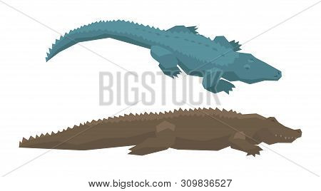 Crocodile vector cartoon crocodilian character of green alligator carnivore illustration animalistic set of dangerous amphibian predator with jaws isolated on white background stock photo
