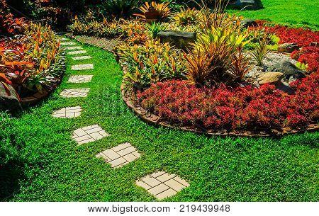 Pathway in garden, green lawns with bricks pathways, garden landscape design, Design background