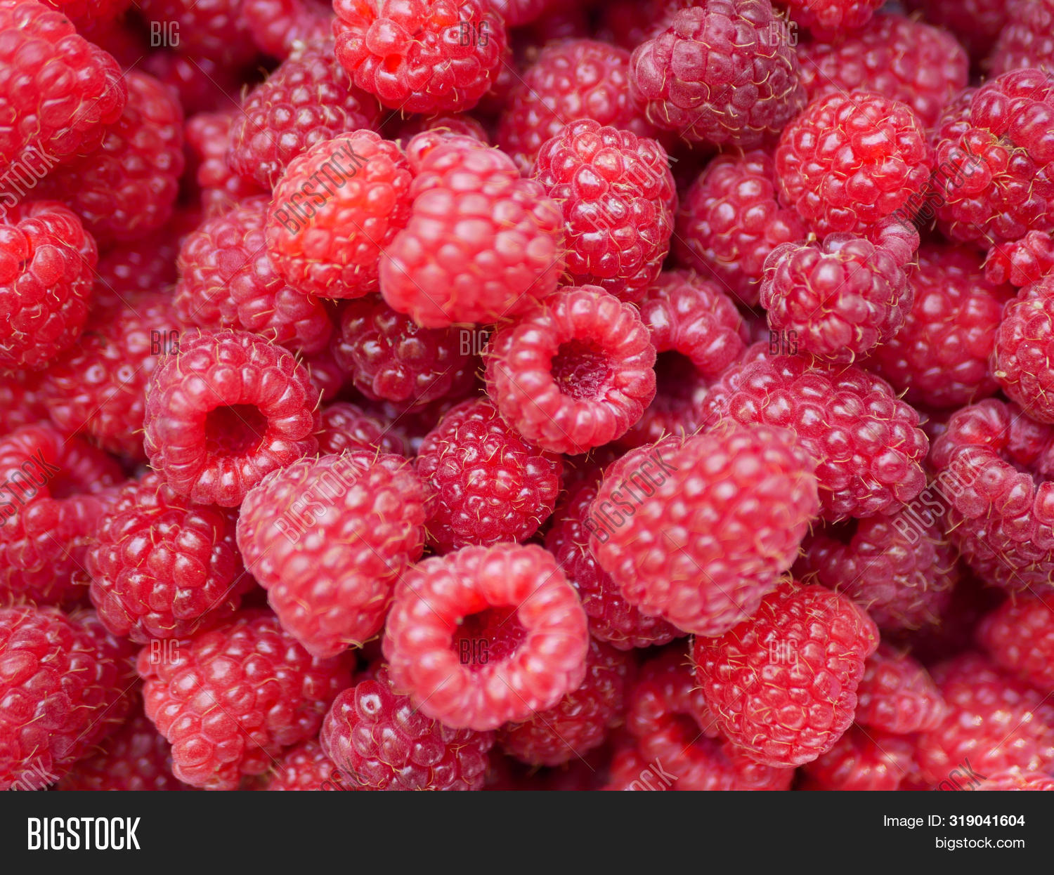 background,background-raspberry,berry,closeup,color,colorful,delicious,dessert,diet,font-raspberry,food,food-raspberry,fresh,freshness,fruit,fruit-raspberries,gourmet,health,healthy,hoarfrost,horizontal,ingredient,juicy,macro,many,natural,nature,nature-raspberry,nobody,nutrition,organic,pattern-raspberry,pink,plant,raspberries,raw,red,ripe,snack,summer,sweet,taste,tasty,texture,vegetarian,vitamin,wallpaper-raspberry