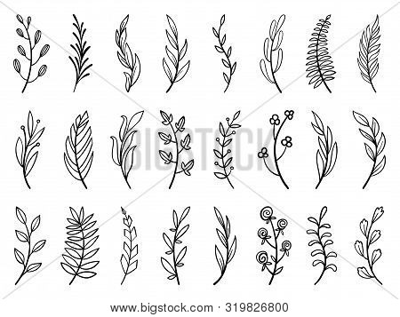 Wreath floral branch in hand drawn style. Outline doodle icons set. Flower line sign Scribble brush collection. Simple sketch wedding design element black contour Vector illustration isolated on white stock photo