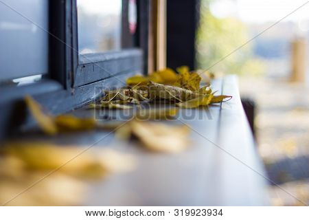 Yellow dry leaves on a brown wooden windowsill in the Park close-up. Autumn leaves on a blurred windowsill background. stock photo