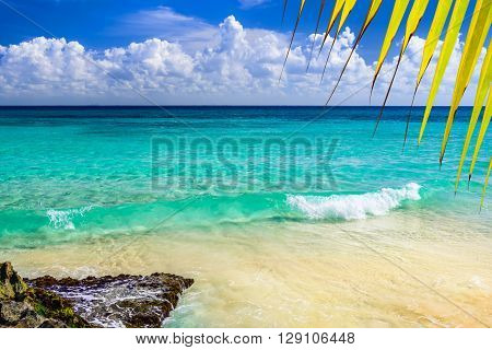 Paradise nature, sand, sea water, rocks, yellow palm tree leaves and summer on the tropical beach.