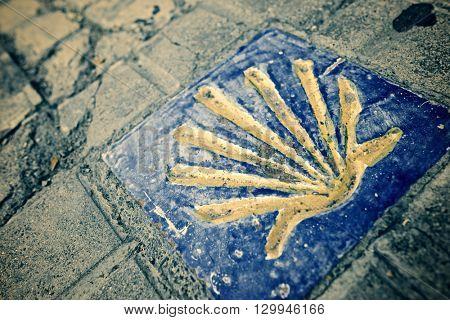 Santiago shell close up in Jaca, Huesca, Aragon, Spain. stock photo