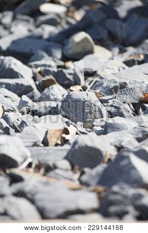 Close up of sharp, gray gravel rocks and leaves stock photo