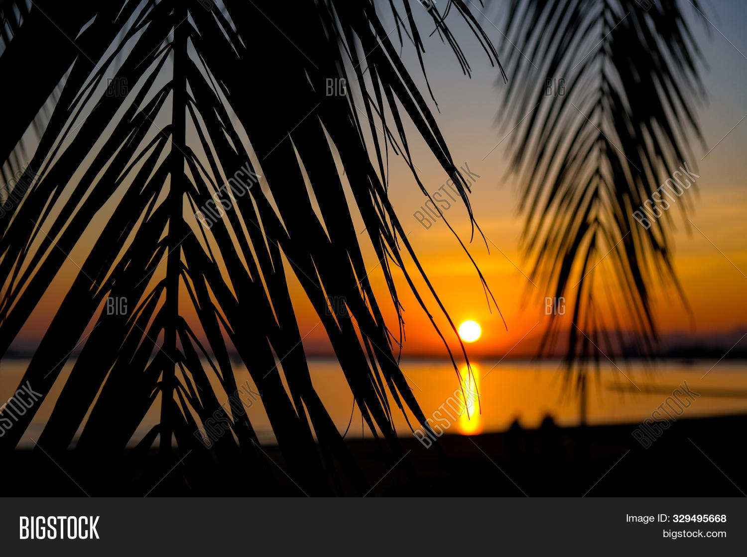 amazing,background,bay,beach,beam,beautiful,branch,calm,catalunya,coconut,colorful,concept,copy,cute,design,dramatic,evening,exotic,golden,happy,jungle,landscape,leaf,leaves,light,modern,natural,night,ocean,outdoor,palm,plant,sea,season,sky,space,spain,summer,sun,sunbeam,sunset,template,tourism,travel,tree,tropical,vacation,view,water