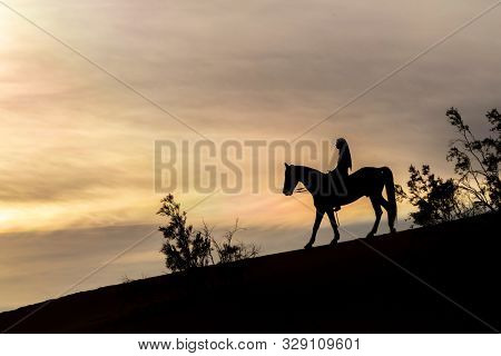 A young brunette female spends time with her horse in a desert environment stock photo