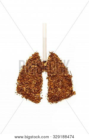 Tobacco for smoking in form of human lungs, cigarettes. Addiction to smoking, harm of tobacco smoke. Bad habit, smoking kills. stock photo