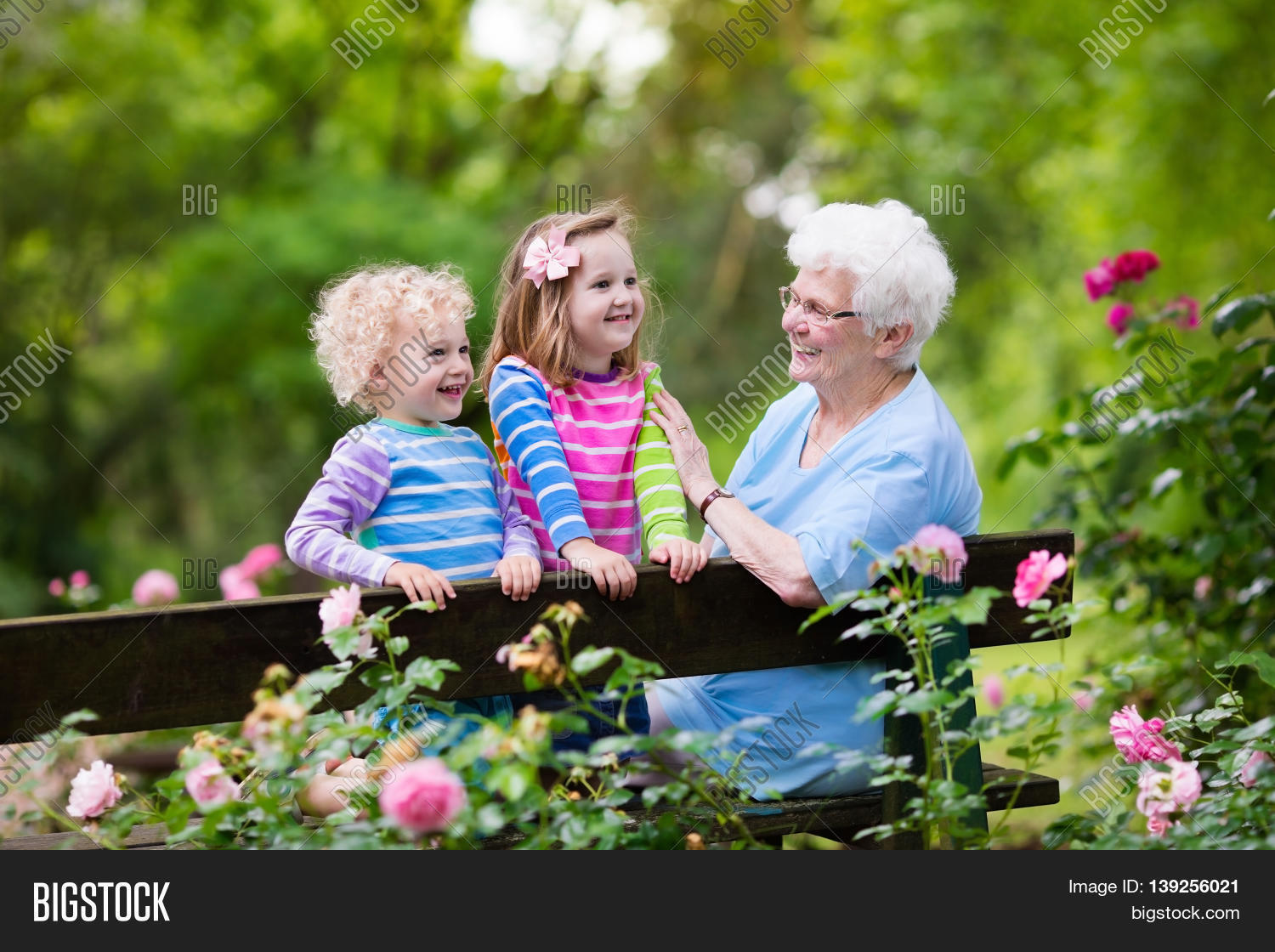 grandmother,garden,family,child,happy,girl,people,kids,grandparents,summer,woman,granddaughter,toddler,senior,little,park,fun,together,party,old,outdoor,elderly,mother,young,boy,son,twins,grandson,rose,flowers,bush,sit,bench,relax,grandchild,great,spring,autumn,fall,gardener,day,baby,gardening,love,grandma,playing,help,retired,retirement