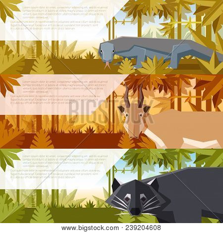 Vector image of the Set of flat banners with asian animals comodo dragon, saiga antelope and binturong stock photo