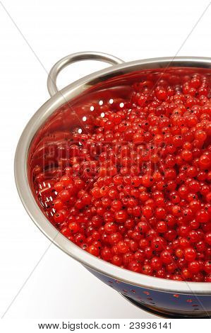 Fresh red currant berries with water drops in colander - isolated stock photo