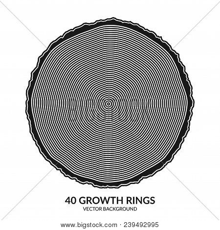 40 growth rings. Tree rings and saw cut tree trunk. Can be used as 40th anniversary concept. Vector illustration stock photo