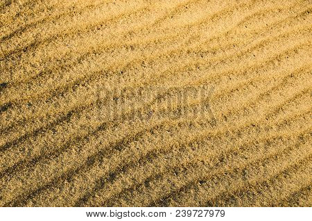 Yellow sand desert dunes.Drought, arid climate.Martian surface.Close up. stock photo
