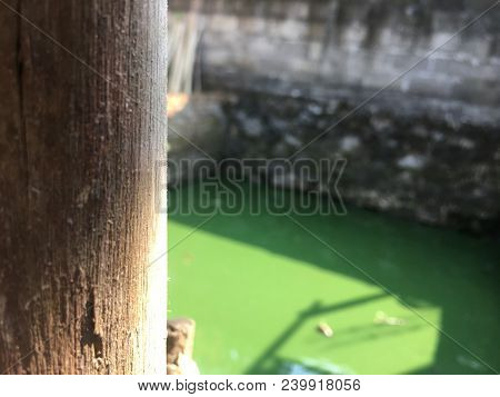 Wooden pole in the backyard with blury background stock photo