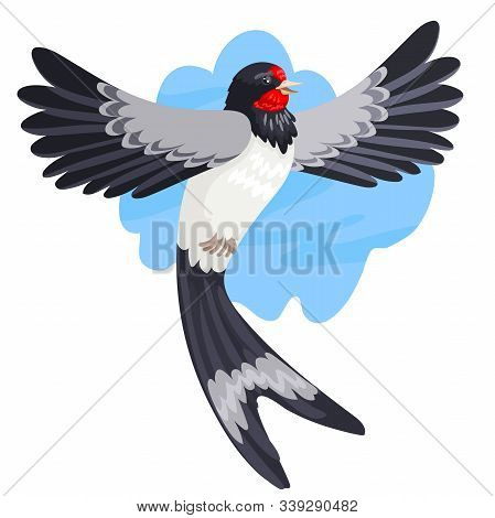 Spring migratory bird a swallow in flight against the background of the sky. Vector illustration of a wild animal stock photo