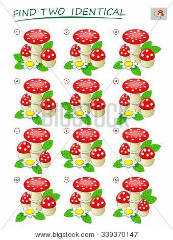 Logic puzzle game for children and adults. Need to find two identical mushrooms. Printable page for kids brain teaser book. Developing spatial thinking skills. IQ test. Vector cartoon image. stock photo