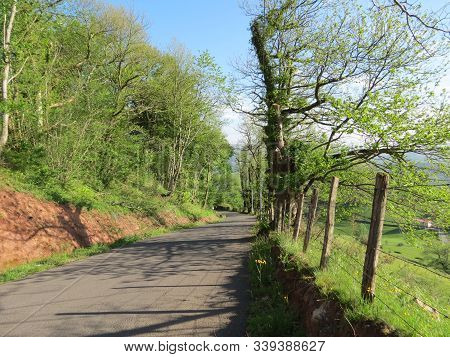 Camino de Santiago pilgrimage way in Pyrenees from France St. Jean pied de Port to Orisson refuge, bright spring day, blue sky, difficult road stock photo