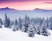 Fantastic night winter scene. Sensational cloudy sky. Innovative arrangement. Magnificence world.
