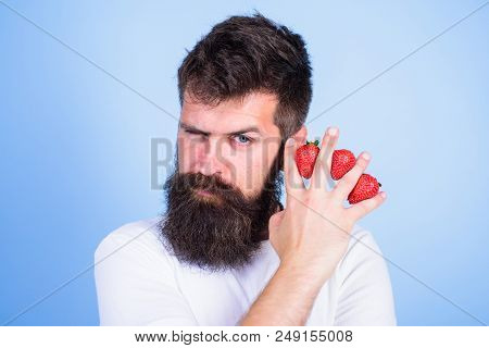 Carbohydrate content strawberry. Metabolic disease. Strawberries safest fruit for sugar levels. Man beard hipster strawberries fingers blue background. Mostly carbohydrates sucrose fructose glucose. stock photo