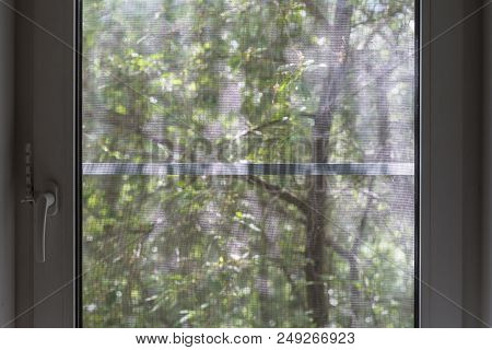 A closed PVC window with a mosquito net, on a blurred background a tree with green leaves in the morning sun. stock photo