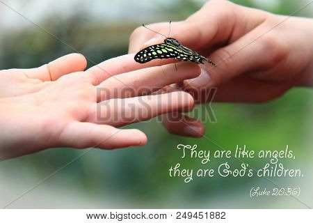 A butterfly resting on children's fingers with a Bible quote. stock photo