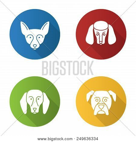 Dogs breeds flat design long shadow glyph icons set. Chihuahua, poodle, beagle, boxer. Vector silhouette illustration stock photo