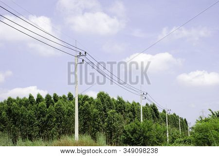 Electricity pole against blue sky clouds, Transmission line of electricity to rural with green tree, High voltage electricity pole with nature background, electricity transmission pylon stock photo