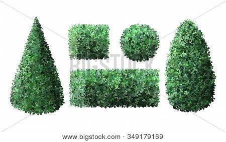 Realistic garden bushes. Topiary boxwood gardener evergreen fence with leaves, geometric tree crown bush foliage nature green seasonal shrub vector isolated 3d illustration set stock photo