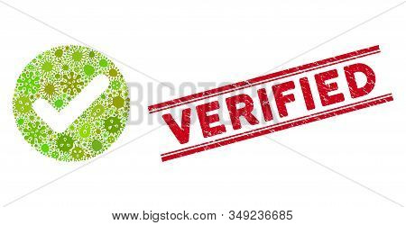 Infection mosaic accept icon and red Verified seal stamp between double parallel lines. Mosaic vector is composed from accept icon and with random pandemic symbols. Verified seal uses red color, stock photo