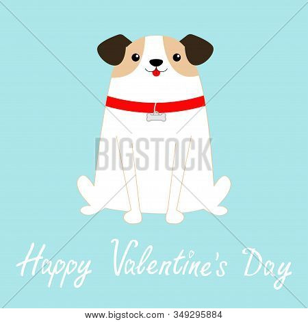 Happy Valentines Day. Dog sitting. White puppy pooch. Red collar bone. Cute cartoon kawaii funny baby character. Flat design style. Help homeless animal Adopt me. Pet adoption. Blue background. Vector stock photo