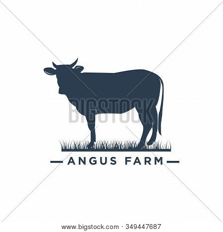 black angus farm logo design.Cow Cattle Beef logo design stock photo