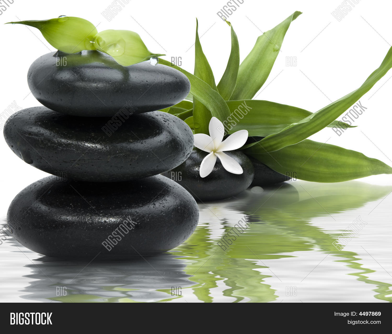 Spa Still Life With Black Stones And Bamboo Leafs In The Water 4497869 Image Stock Photo