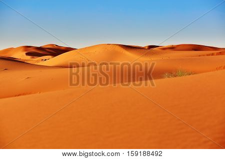 Sand dunes in the Sahara Desert Merzouga Morocco stock photo