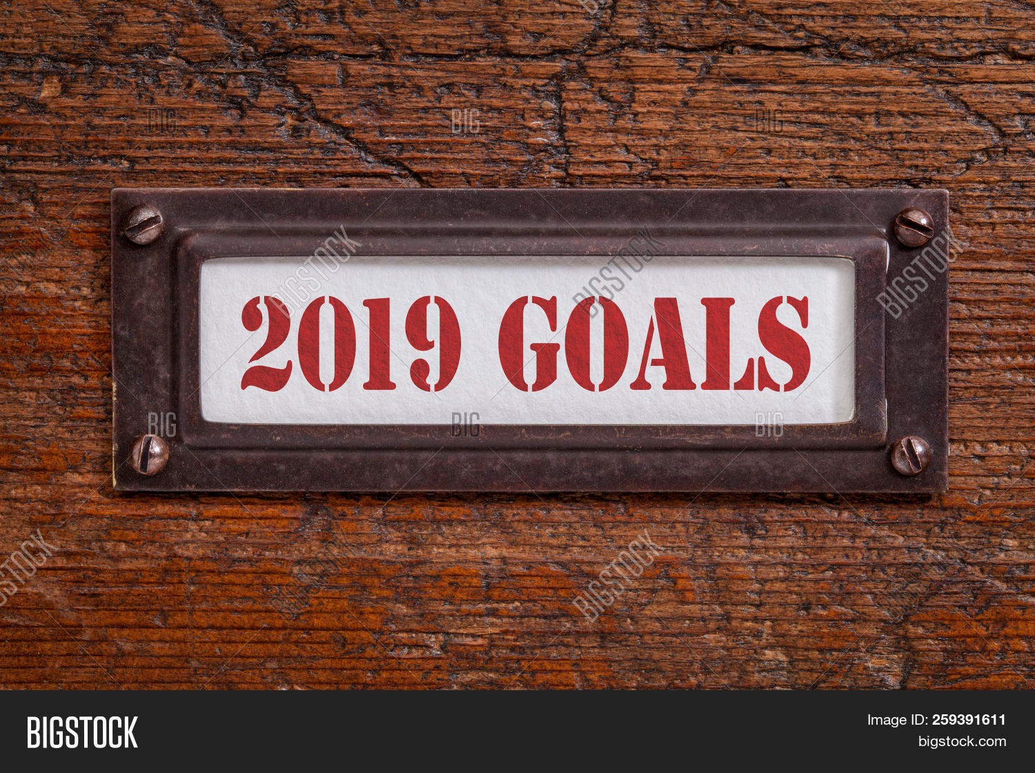2019 goals  - a label on a grunge wooden file cabinet, New Year goals and resolutions concept