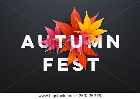 Realistic autumn maple leaves with text. Momiji. Vector illustration. stock photo