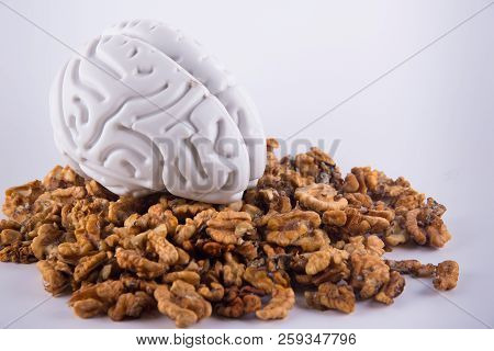 Grey plastic human brain staying between walnut kernels on white background stock photo