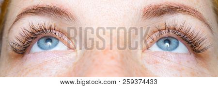 Eyelash Care Treatment Procedures, Staining, Curling, Laminating and Extension for Lashes. Beauty red-haired girl with freckles Model with Long Eyelashes. Skincare, Spa and Wellness. Close up stock photo