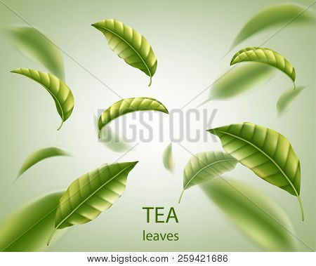 Realistic tea leaves background. Green leaves tea whirl in the air for design, advertising and packaging. Vector illustration. stock photo